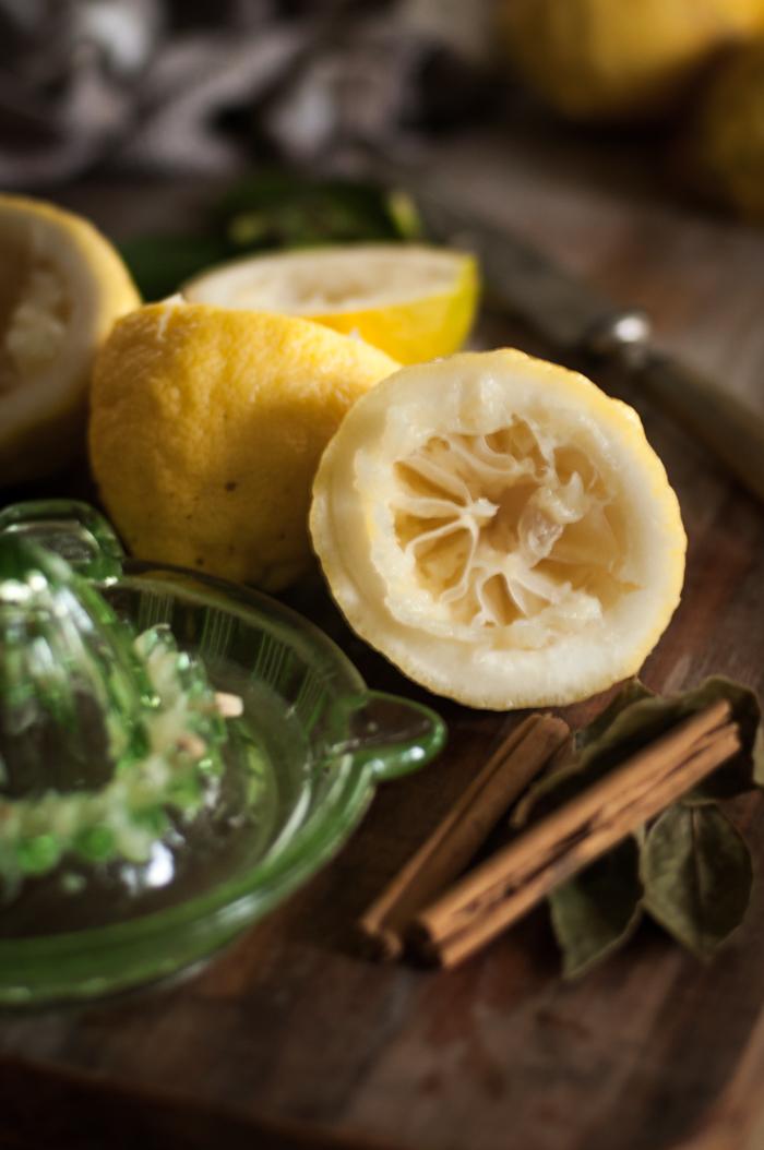 Preserved Lemons-24