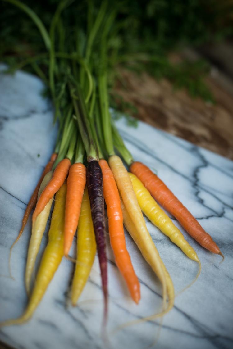 Colourful Recipe-35